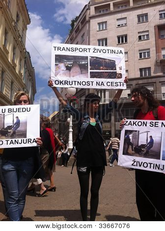 ZAGREB - MAY 26. Animal welfare protesters on Bana Jelacic square on Saturday 26th, 2012 in Zagreb, Croatia. Animal welfare demonstrators show their support with banners and megaphones.