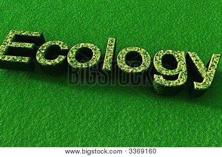 Ecology 3D Text