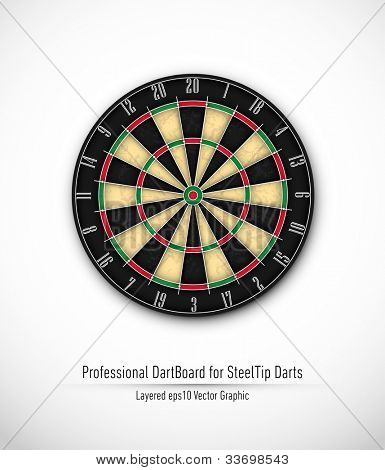 Professional Dartboard for Steel Tip Darts   Eps10 Vector Background   Layers Organized and Named