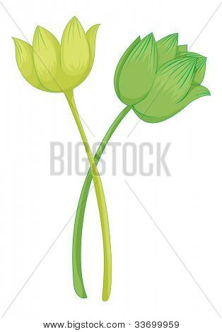 Illustration of a lotus flower - EPS VECTOR format also available in my portfolio.