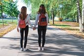 Two Teenage Girls Walk In Summer In Park, Walk After School And College, Hold Hands, Best Friends Re poster
