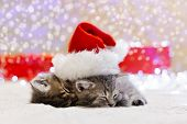 Christmas Kittens, Wearing Santa Claus Hat Sleeping On White Plaid With Blurry Lights. Adorable Litt poster