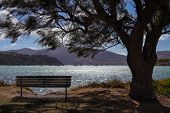 Tranquil Lake Viewed From Behind A Bench poster