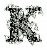 stock photo of letter k  - Capital letter K from flowers in vector - JPG