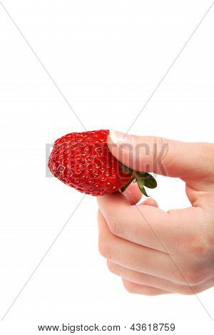 Juicy Strawberry In A Female Hand Isolated On White Background.