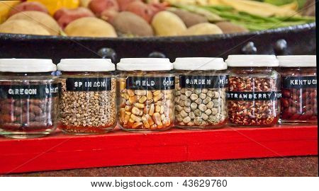 Small Jars Of Garden Seeds And Beans