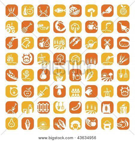 big color farm icon set