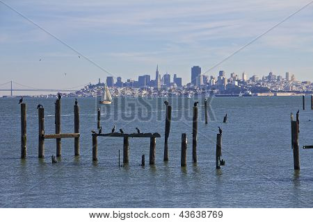 San Francisco Skyline Across The Bay