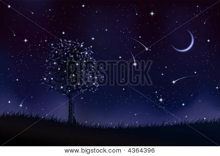 Lone Tree At Night
