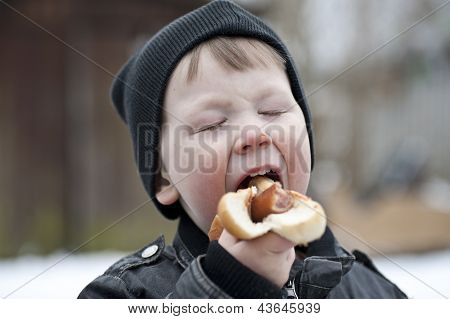 Young Boy Eating Hotdog