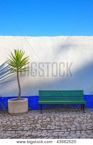 Dracaena Cornstalk Plant And A Bench In Front Of A Blue And White Wall. Obidos, Portugal.