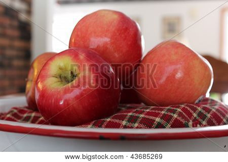 Country bowl with apples