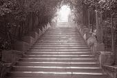 pic of stairway to heaven  - Stairway to Piazza Michelangelo Florence Italy in Black and White Sepia Tone  - JPG