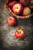 stock photo of wooden basket  - Fresh harvest of apples - JPG
