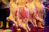 stock photo of slaughterhouse  - Put the meat hanging in slaughterhouse case of fresh - JPG