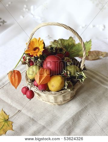 Basket With Autumn Goodies