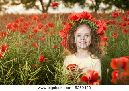 Cute Little Girl In The Poppy Field