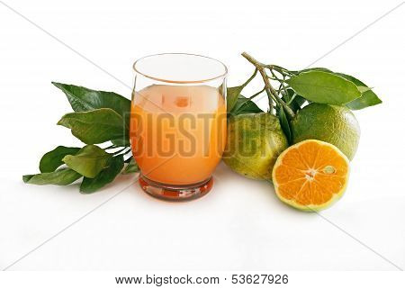 green mandarines miyagawa and orange juice