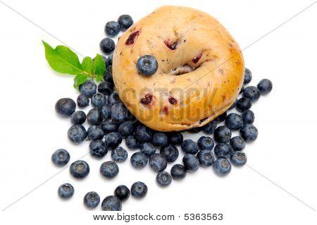 Blueberry Bagel