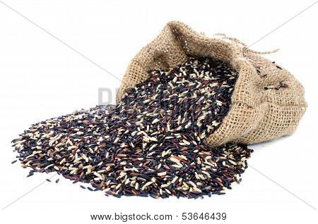 Black Pile Rice In Gunny Bag With White Isolate Background
