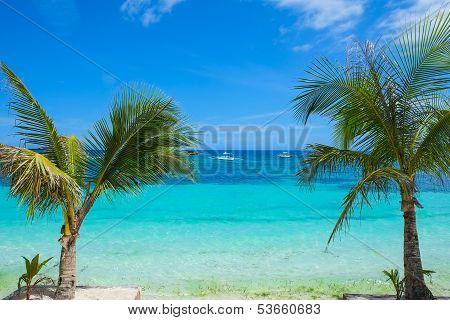 Seashore Of Tropical Island