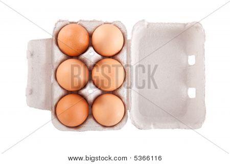 Half dozen brown chicken eggs
