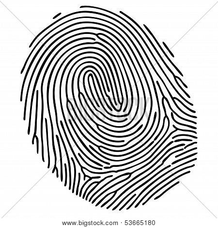 Vector Black Fingerprint On White Background