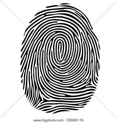 Vector Black Isolated Fingerprint On White Background