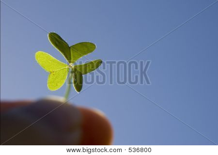 Finger Holding A Backlighted Clover