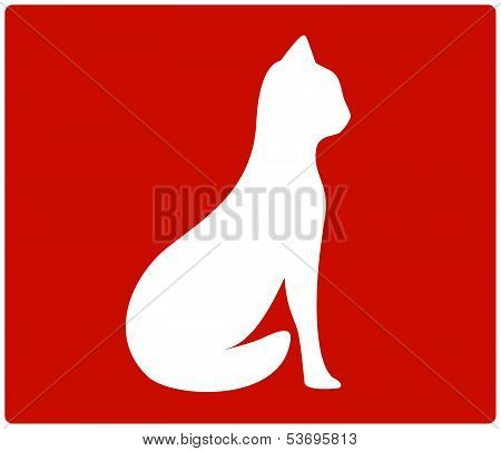 red backdrop with cat