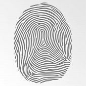 foto of fingerprint  - Vector isolated dark fingerprint on gray background - JPG