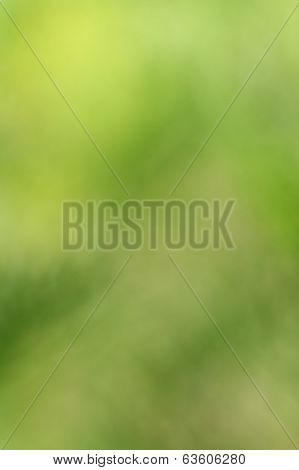 Abstract natural green background