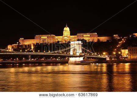 Buda Castle And The Chain Bridge At Night