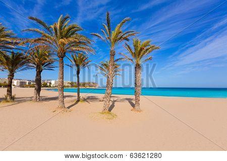 Javea playa del Arenal beach in Mediterranean Alicante at Xabia Spain palm trees
