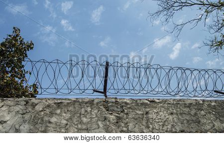 Wired Boundary Border Wall