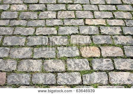Stone Pavement With Green Grass. Texture Or Background.