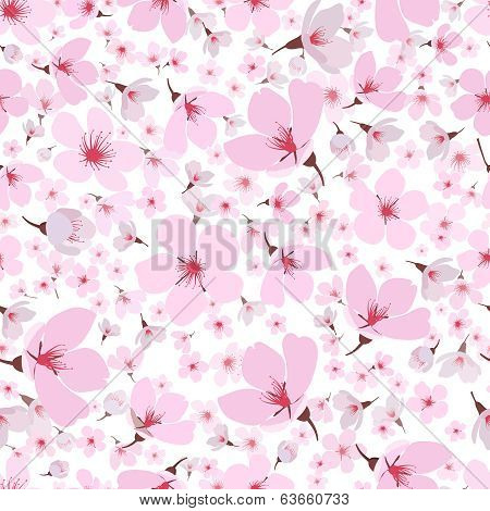 Seamless pattern of pink spring Sakura blossom
