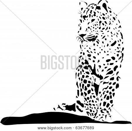 Leopard.eps