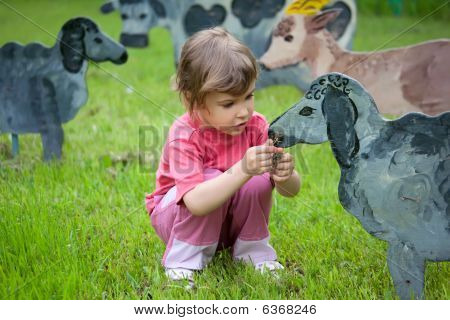 The girl feeds wooden sheep