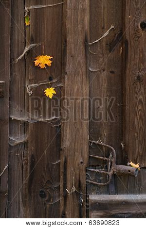 Old Barn Wooden Door