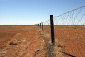 Australian Outback Dingo Fence
