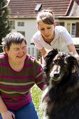stock photo of working animal  - disabled woman is making a animal - JPG