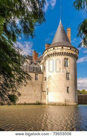 View At The Chateau Sully Sur Loire