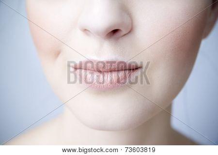 Sensual Female Lips