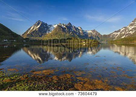 The View On The Landscape In Lofoten Islands