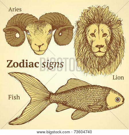 Sketch Zodiac Ram, Fish And Lion