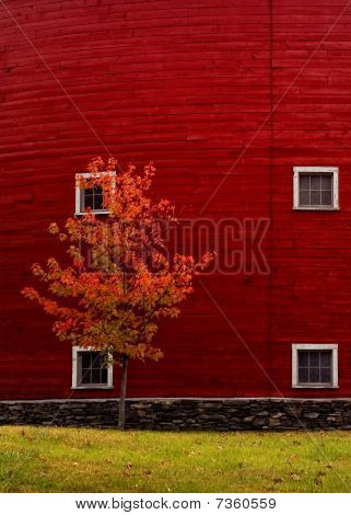 Closeup Of Red Barn With Fall Tree