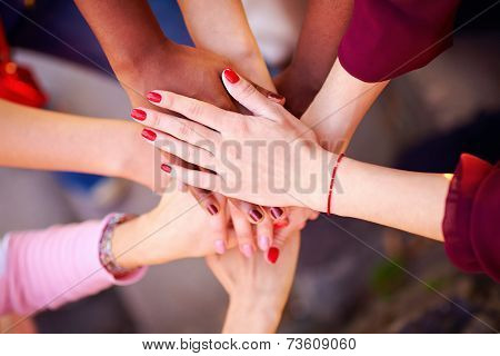 Pile Of Female Multiethnic Hands In Union Sign