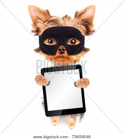 super hero puppy dog with tablet pc