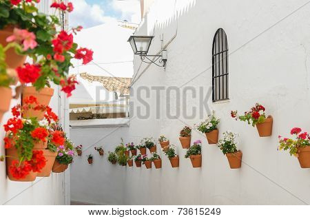 Andalusia Street